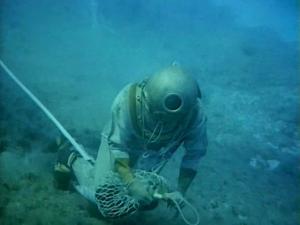 buzo recogiendo esponjas marinas